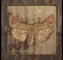 carved_moth_1