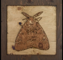 carved_moth_18