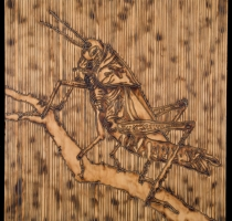 CRICKET-carved_torched_wood_w_encaustic_wax__30x30_