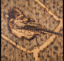 JUNCO-carved_torched_wood_w_encaustic_wax__30x30_