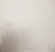 fog_7494