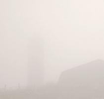 fog_7509
