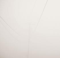 fog_7539