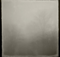 fog_7559_waxed