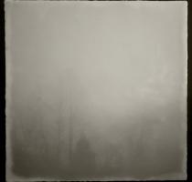 fog_7580_waxed
