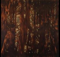 forest_landscape_10
