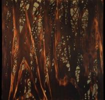 forest_landscape_13