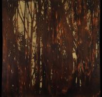 forest_landscape_3