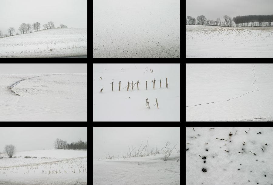 snow contact