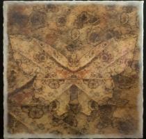 moth_3_waxed